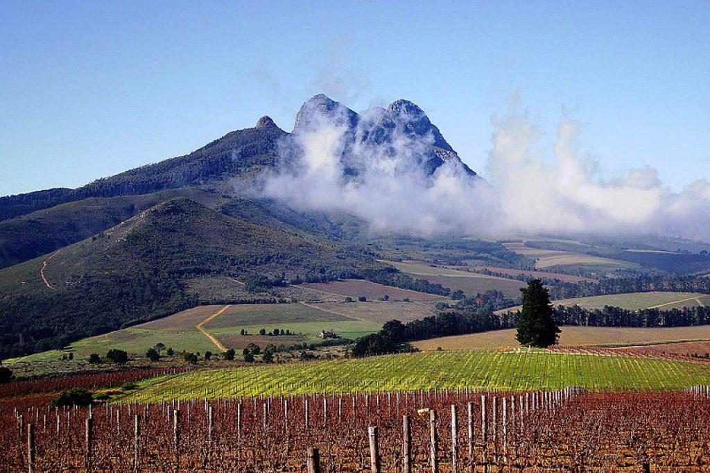 winelands-full-day