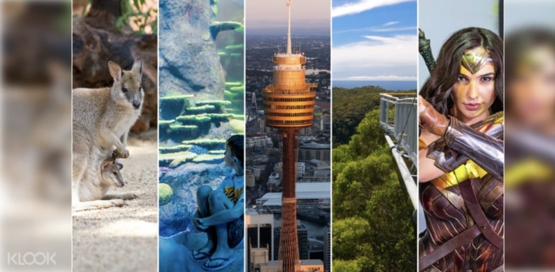 ultimate sydney attractions pass