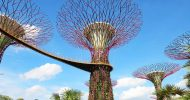 Gardens by the Bay Ticket in Singapore