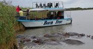 St. Lucia Wetlands Boat Ride